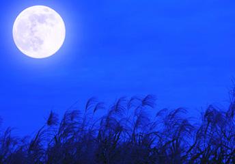 年中行事 お月見